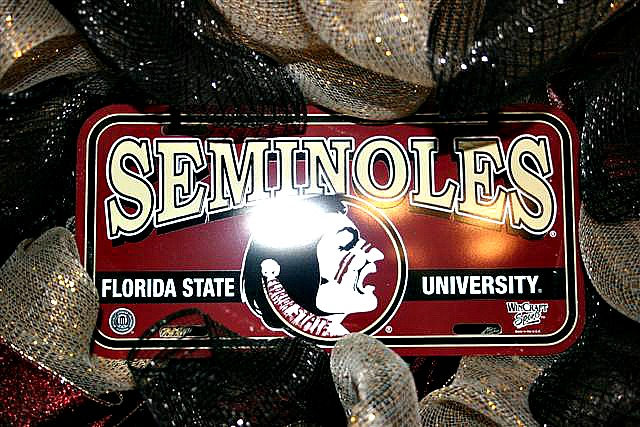 Team Spirit Wreath Contest- $50 CASH PRIZE, Deadline Sept 30th-# Florida State Wreath- http://www.wreathideagallery.com/team-spirit-wreaths